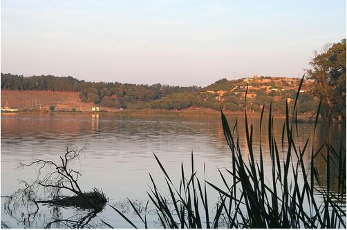 lac reghaia4